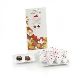 Galerie Au Chocolat Canadiana Sm M/D Mpl Choc 108g